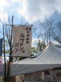 Sakura_0111
