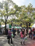 Sakura_0151_2
