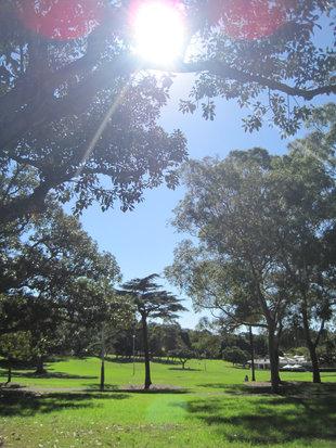 Sydney_0241