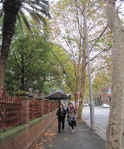Sydney_0211