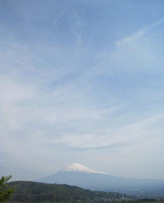 Hamamatsu_0441_3